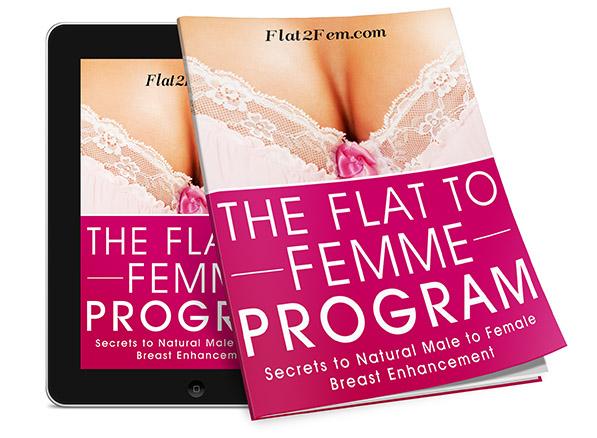 flat2fem-ebook