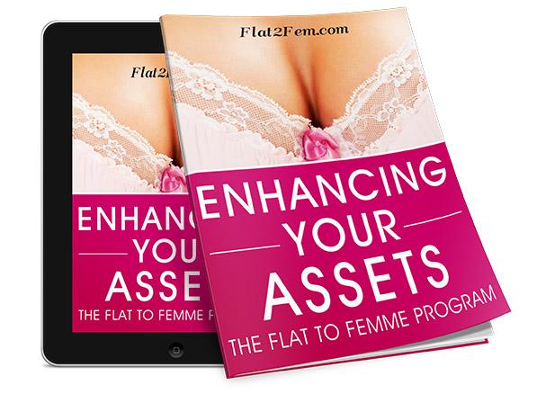 flat2fem-enhancingassets